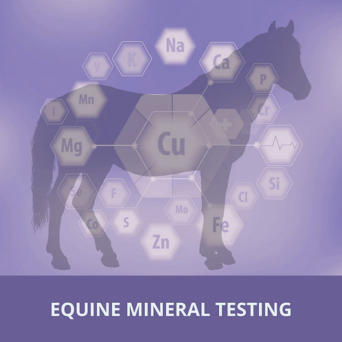 Equine Mineral Testing