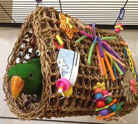 Birdtalk Bird Toys - Boutique Birdie Bed