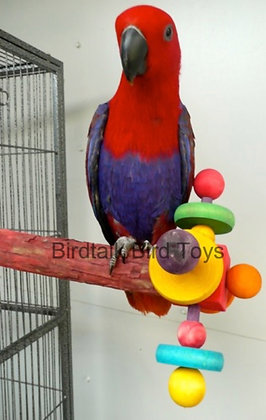 Birdtalk Bird Toys - Rainbow Perch