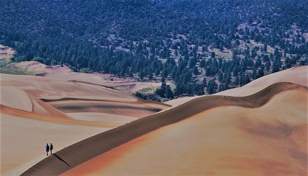 sand-dunes-1246725_1280(1).jpg