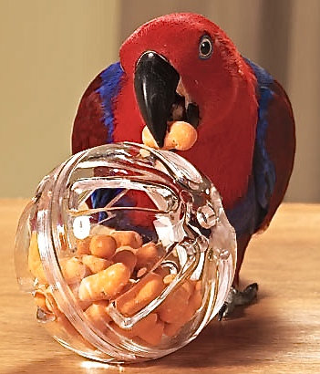 Birdtalk Bird Toys - Foraging Ball