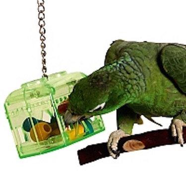 Birdtalk Bird Toys - Treasure chest (Large )