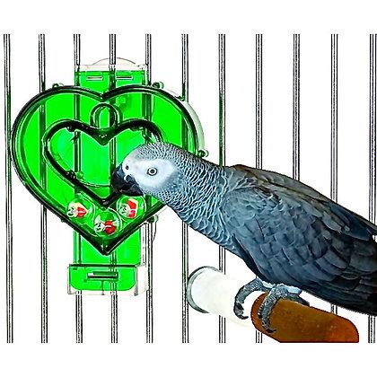 Birdtalk Bird Toys - Mastermind