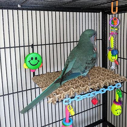 Birdtalk Bird Toys - Sundeck Platform