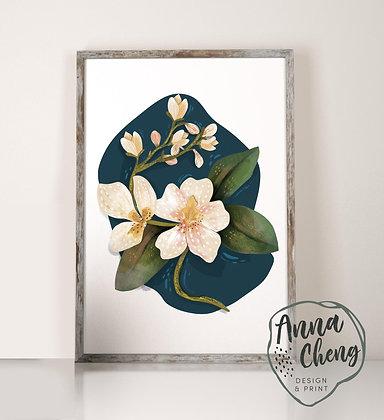 Anna Cheng Design
