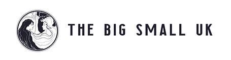 The Big Small UK Web banner (1).jpg
