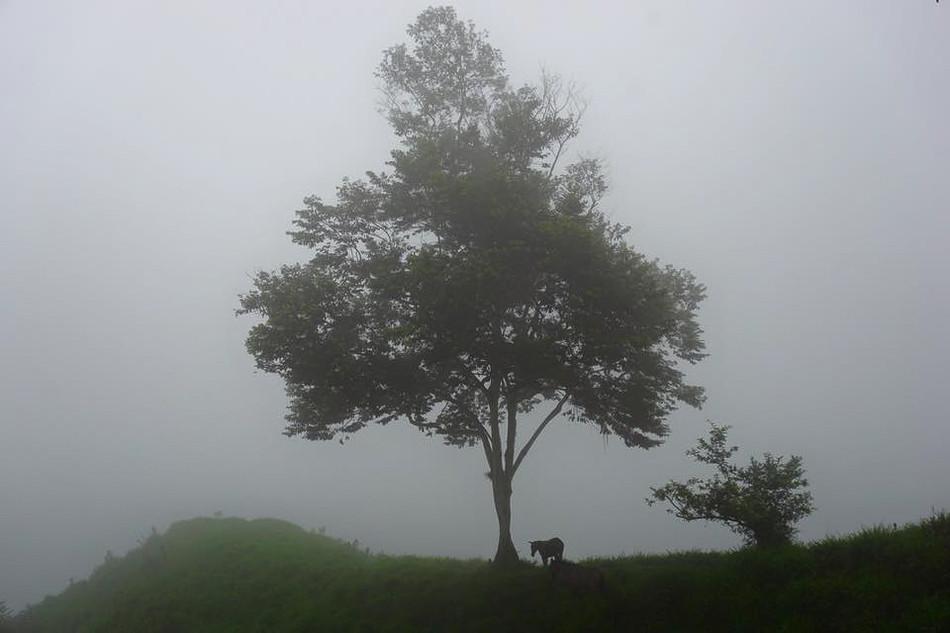 Sierra Nevada de Santa Marta, Colombia. 2017