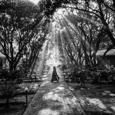 Bagan Orchard, Uttar Pradesh, India. 2016.