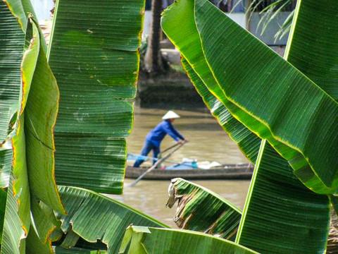 Mekong River Delta, Vietnam. 2009