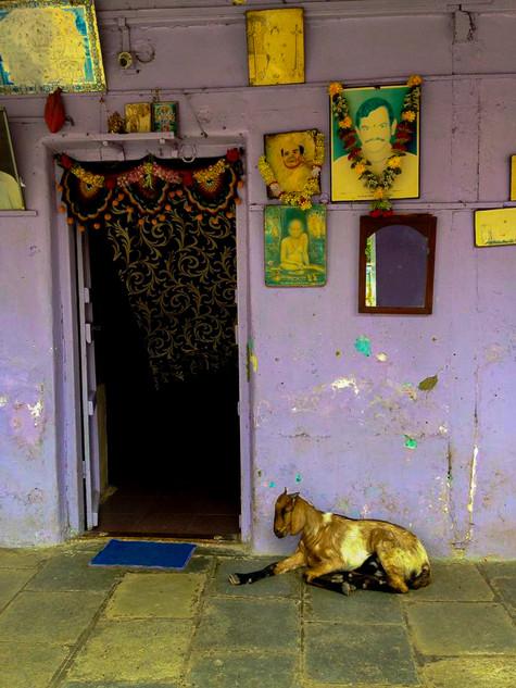 Kochi, Maharastra, India. 2014