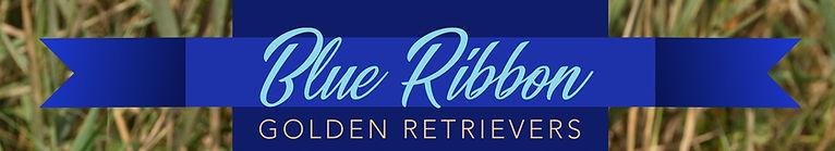 Blue Ribbon Header.jpg
