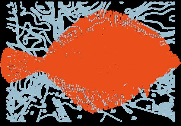 FLATFISH MAP.png