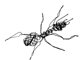 Logo%20Nicolas%20Eres_edited.png