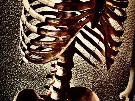 Das Zwerchfell- die Pumpe in unserer Mitte