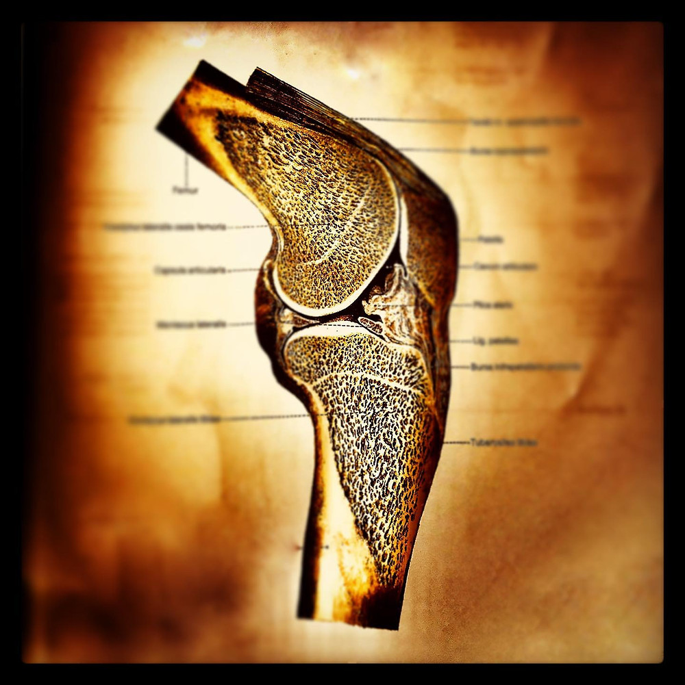 osteoporose  radiuszwei physiotherapie oberwil BL