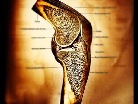 Osteoporose behandeln durch LIFTMOR