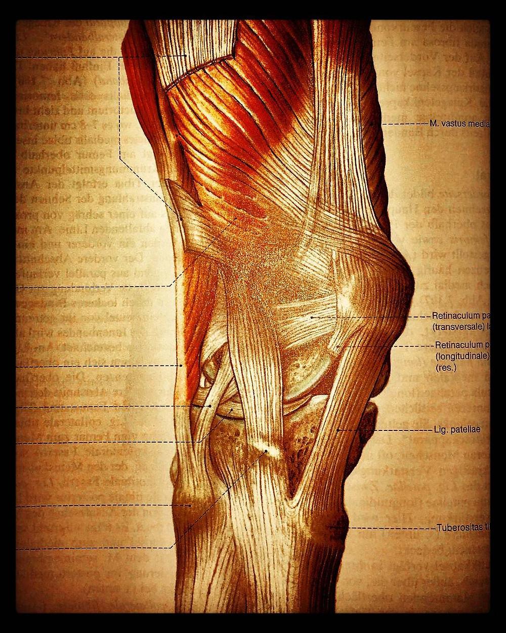 patella schmerz physiotherapie oberwil radiuzwei