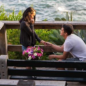 Sean's Proposal