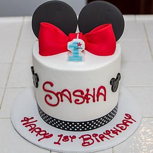 Sasha's 1st Birthday!