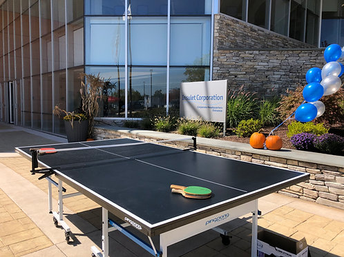 ping pong table game