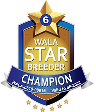 Shuswap Champion Logo 2022.png