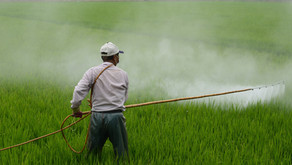 Systemic Change in Crop Protection