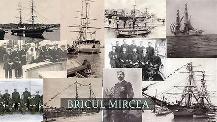 BRICUL MIRCEA.jpg