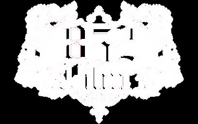 852_logo_white.png