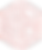 taito logo.png