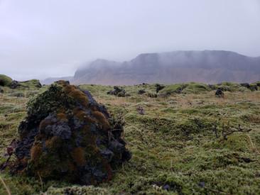 Eldraun Fields, Iceland