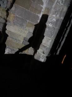 Portrait in Shadow