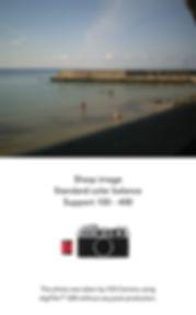YASHICA Y35-30 c.jpg