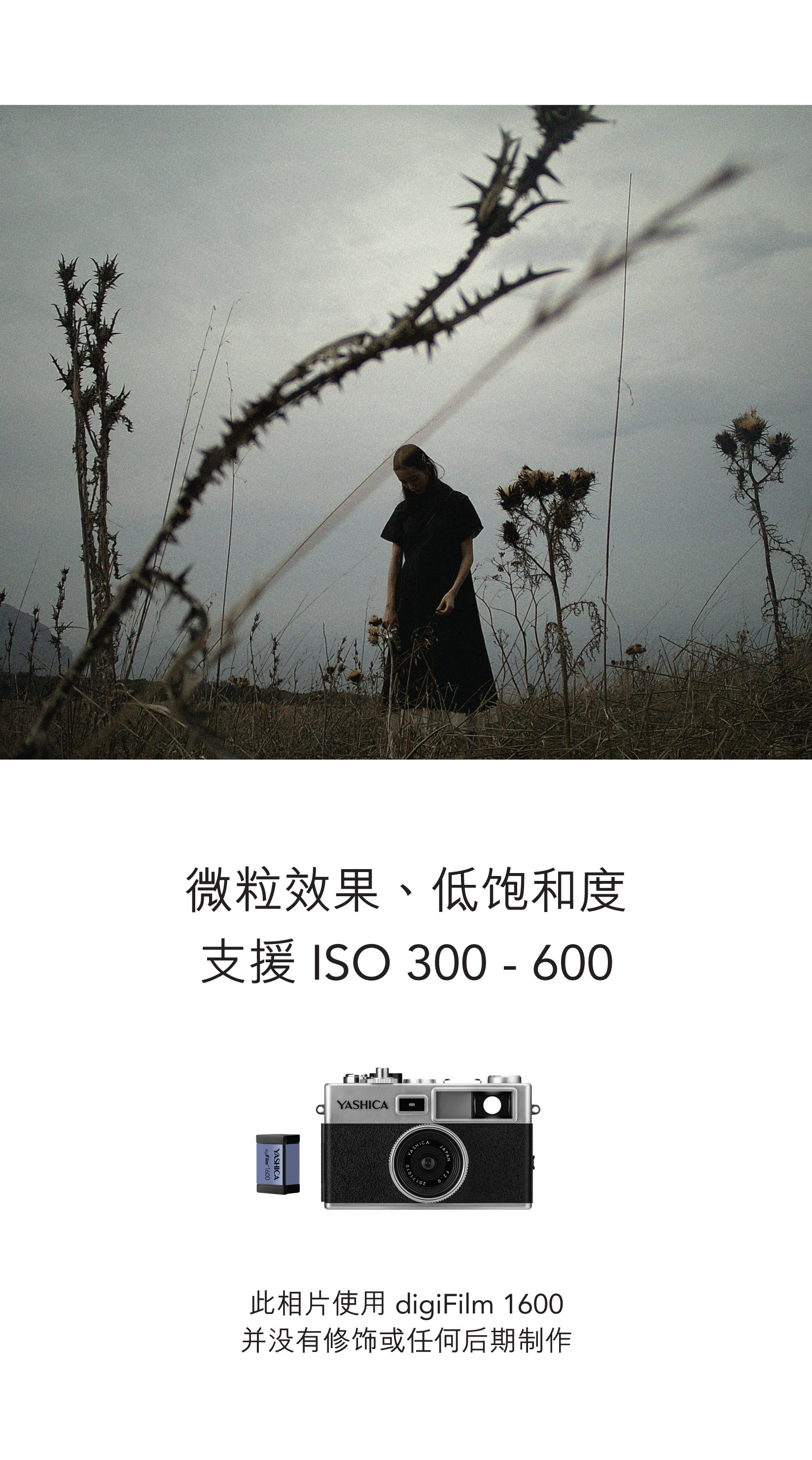 Y35-CN_part-1-19.jpg