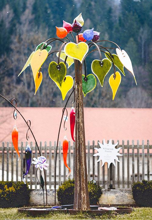 Herzblatt-Baum