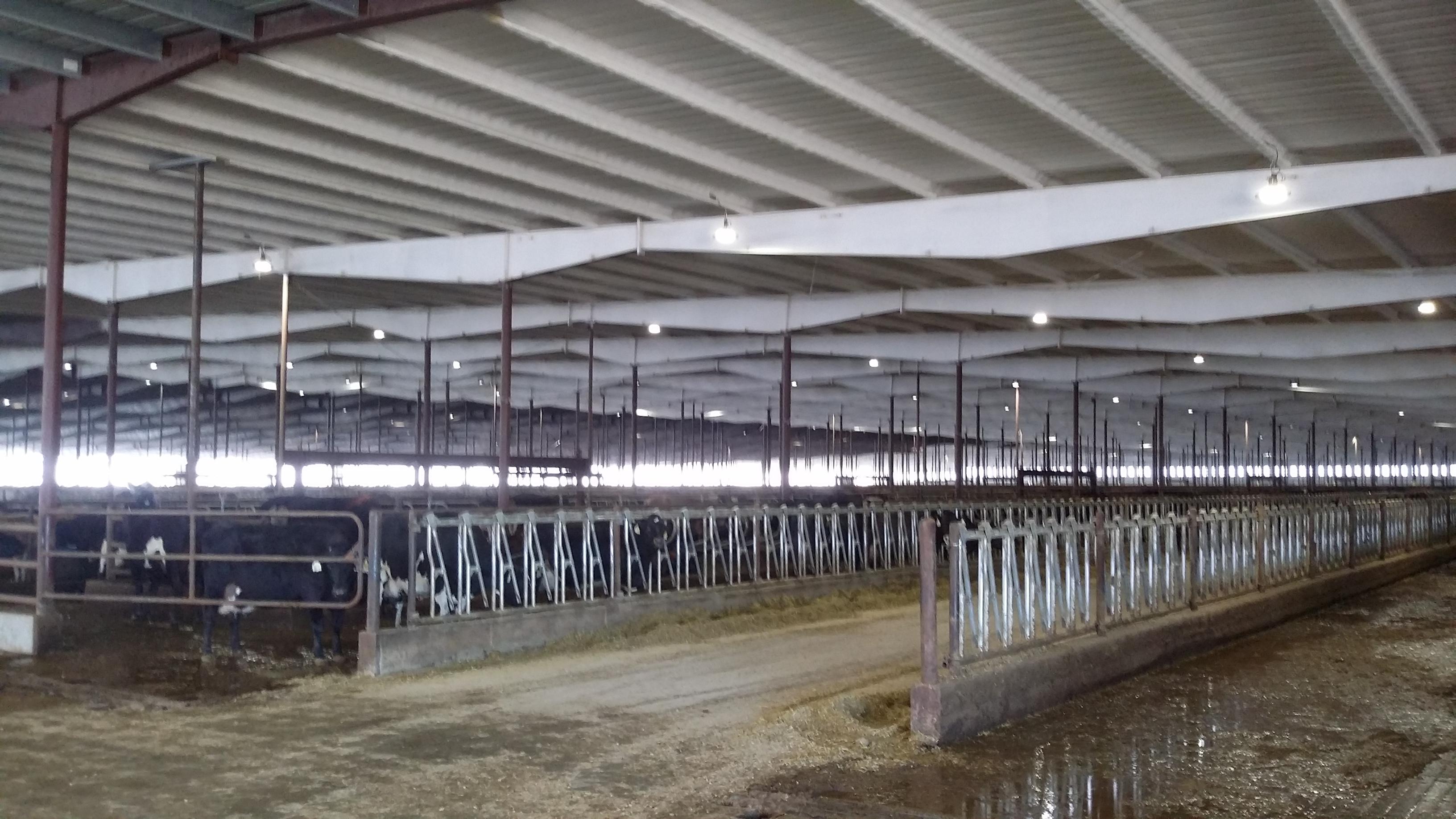 Bettencourt Dairies Idaho