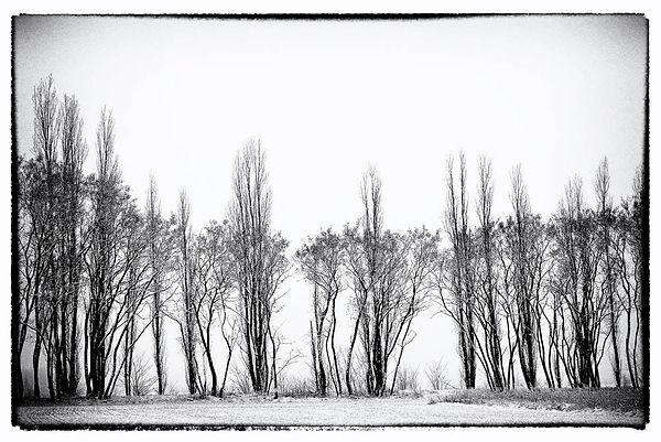 Landschaft004 Kopie.jpg