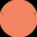 mealmerci_logo_orange.png
