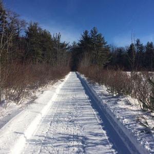 Mason Rail Trail, Cor. 13