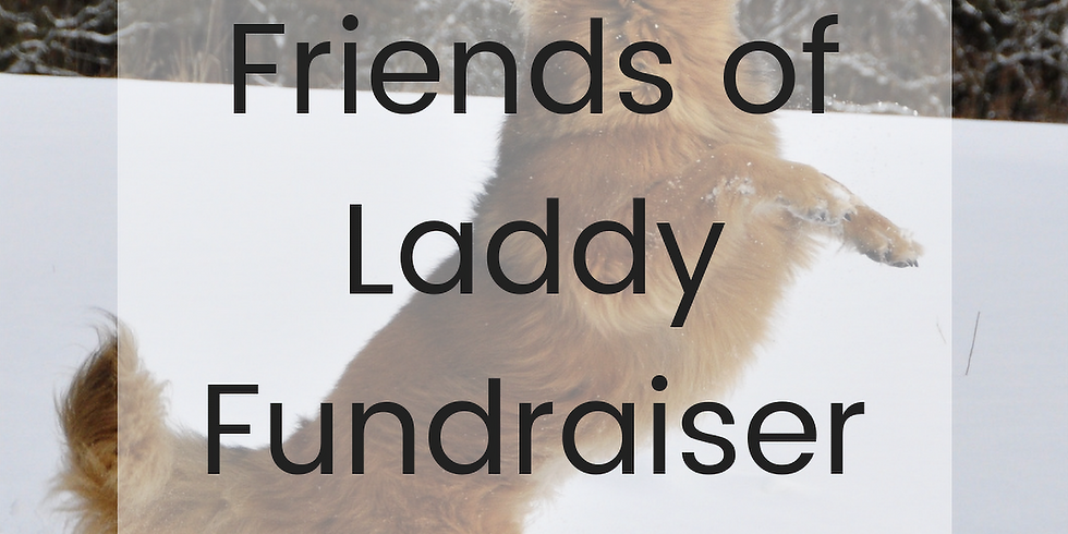 Friends of Laddy Fundraiser