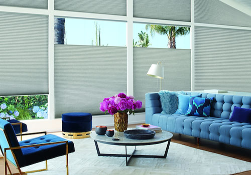 Hunter Douglas, Top Down Buttom UpDUETTE® Honeycomb Shades