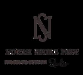 NSN+Full+Logo+.png