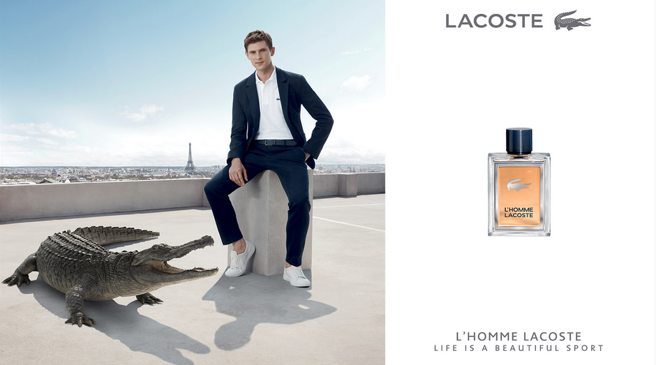Homme Lacoste-Jacobsutton