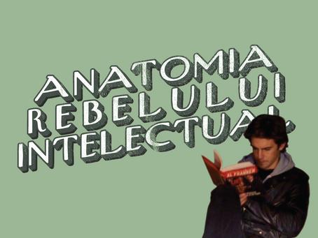 Anatomia rebelului intelectual (în film și televiziune)
