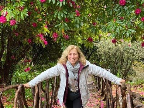 A Dica da Rosa - redescobrir a Madeira