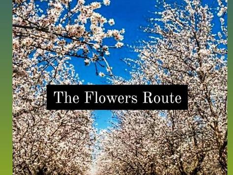 Rota das Flores