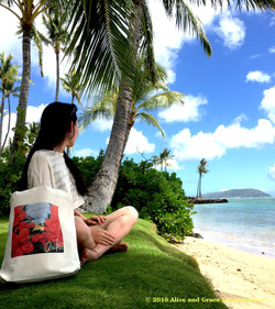 c_hibiscus_hawaii