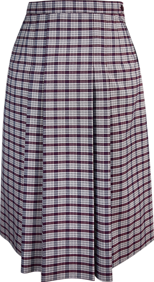 Pleated Check School Skirt Front View