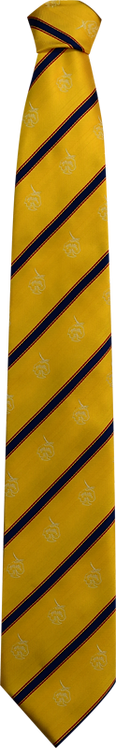 School Boys yellow tie blue stripe