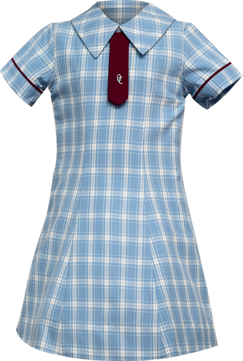 School Uniform Dress Front View