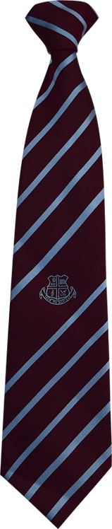 School Boys Tie maroon blue stripe